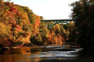 rocky-river-reservation
