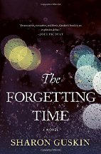 the-forgetting-time